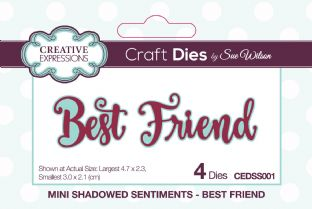 Mini Shadowed Sentiments - Best Friend